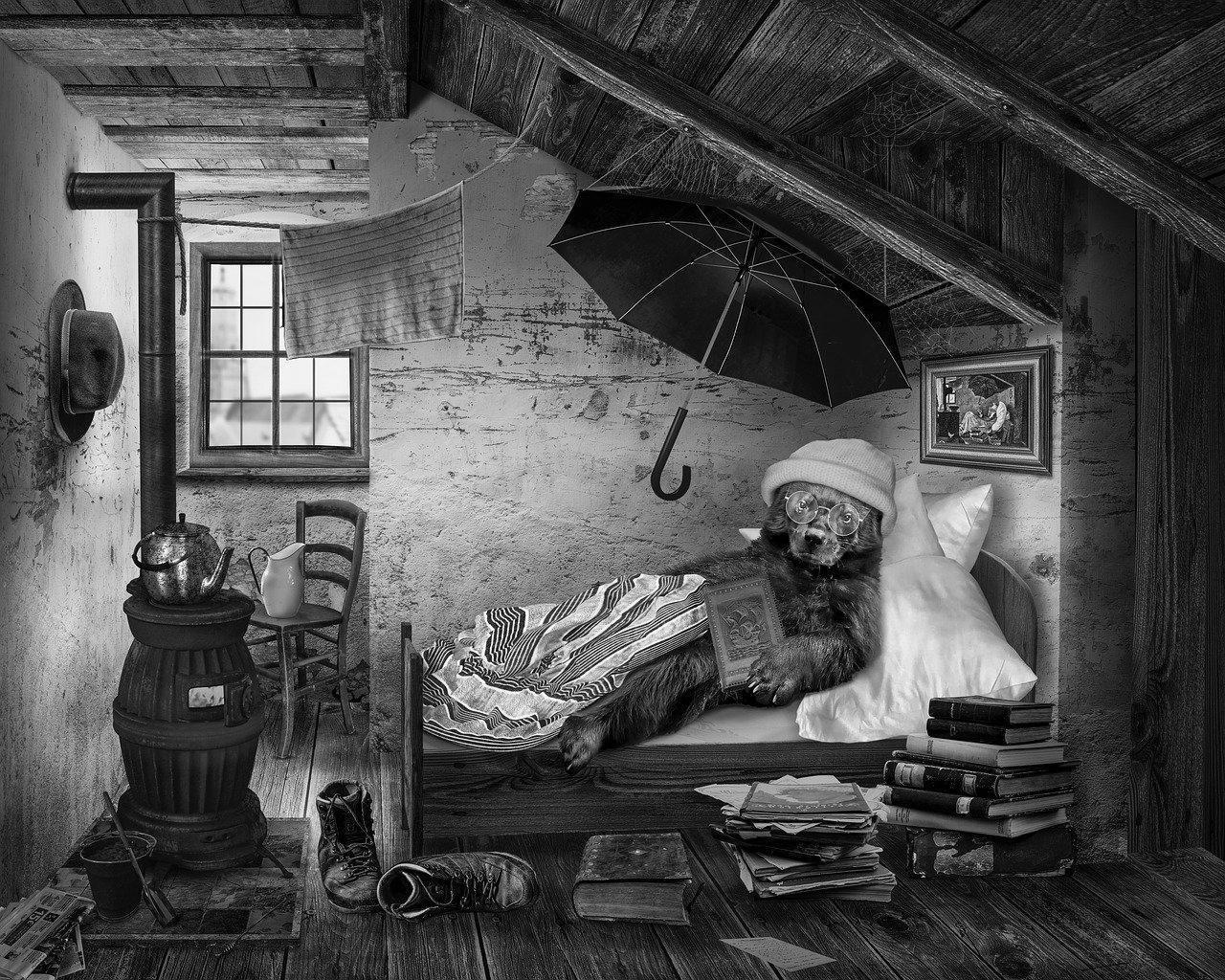 Aménagement de combles à Condé-sur-l'Escaut 59163 | Isolation sous toiture