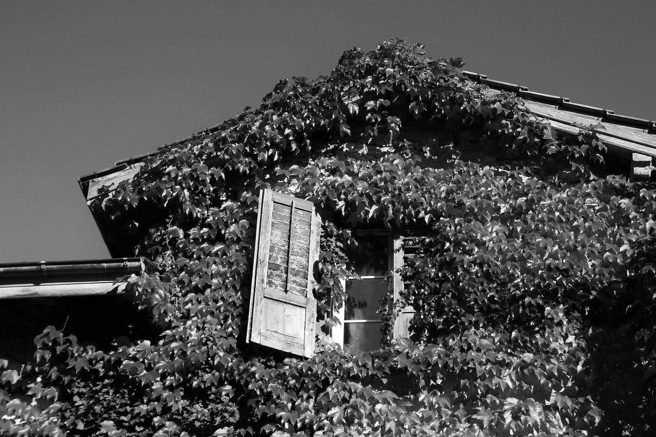 Aménagement de combles à Coulounieix-Chamiers 24660 | Isolation sous toiture