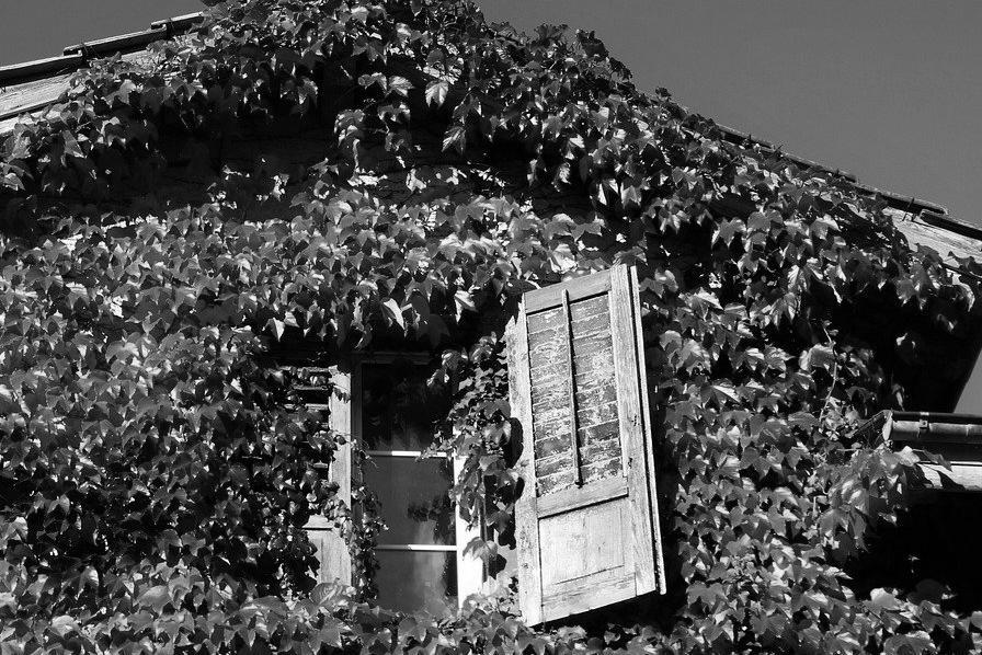 Aménagement de combles à Fleury-Mérogis 91700 | Isolation sous toiture