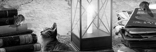 Aménagement de combles à Hayange 57700 | Isolation sous toiture