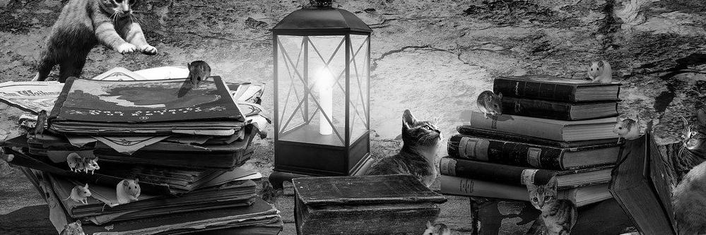 Aménagement de combles à Jeumont 59460   Isolation sous toiture
