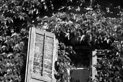 Aménagement de combles à Meudon 92190 | Isolation sous toiture