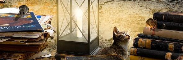 Aménagement de combles à Paris 75000   Isolation sous toiture