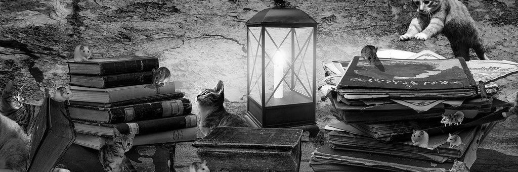 Aménagement de combles à Pont-Saint-Esprit 30130 | Isolation sous toiture