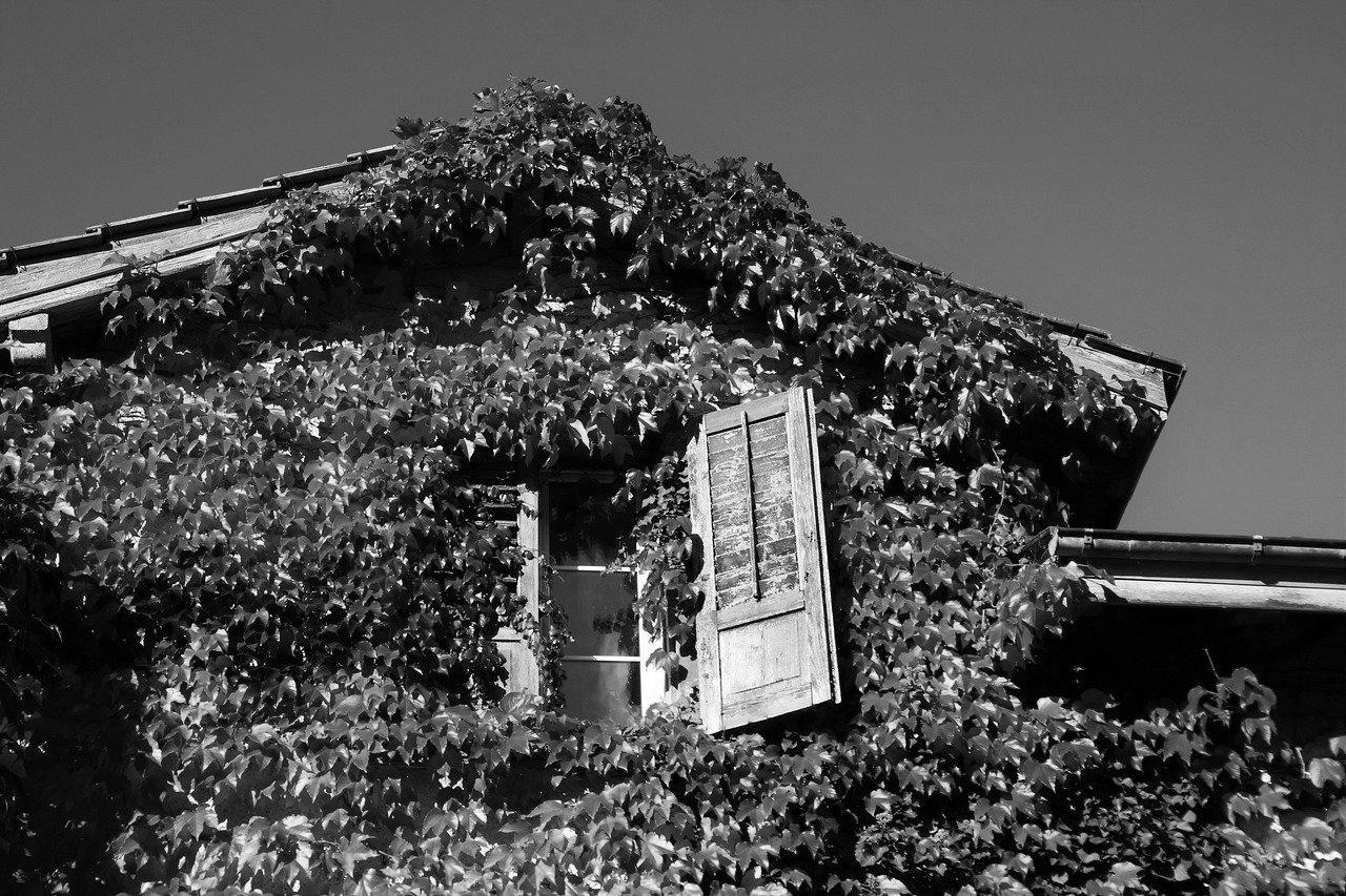Aménagement de combles à Roquebrune-sur-Argens 83520 | Isolation sous toiture
