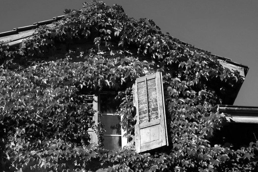 Aménagement de combles à Saint-Hilaire-de-Riez 85270 | Isolation sous toiture