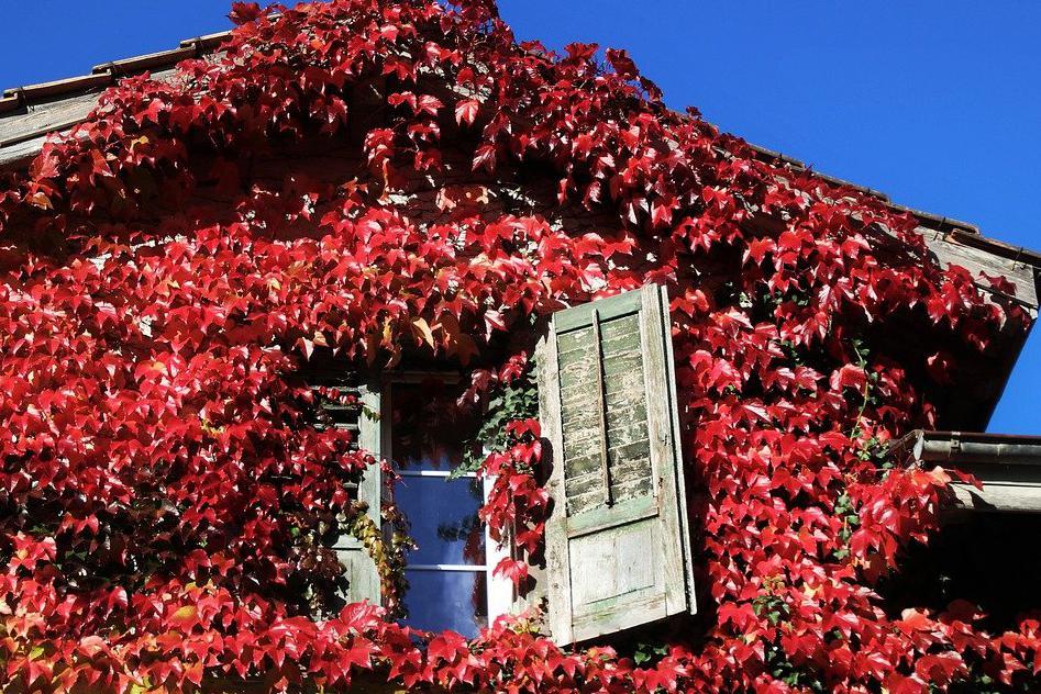 Aménagement de combles à Saint-Orens-de-Gameville 31650 | Isolation sous toiture